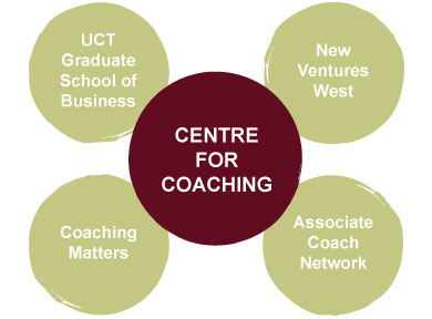 coaching-approach-alliances